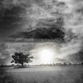 Alone in the Dark by Debra and Dave Vanderlaan