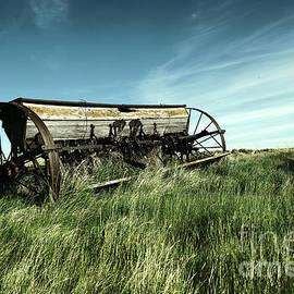 Alone in the field  by Jeff Swan