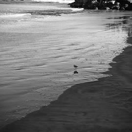 Cendrine Marrouat - Alone in the world