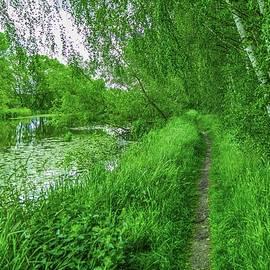 Leif Sohlman - Along creek #g1