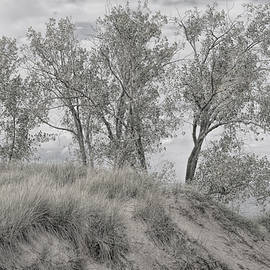 Along Shores Of Lake Michigan by John M Bailey