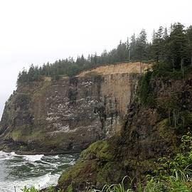 Along The Oregon Coast - 8 by Christy Pooschke