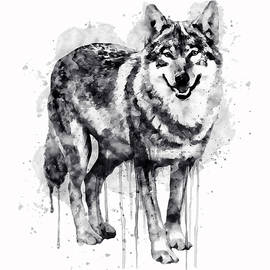 Alpha Wolf Black and White by Marian Voicu