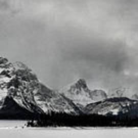 Brad Allen Fine Art - Alpine Snowstorm