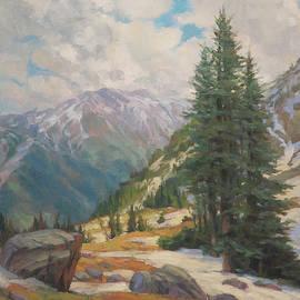 Alpine Spring  by Steve Henderson