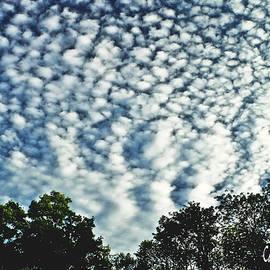 Altocumulus Mackeral Cloud Formation WALL ART  by Carol F Austin