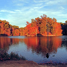 Alum Creek Landscape by Angela Murdock