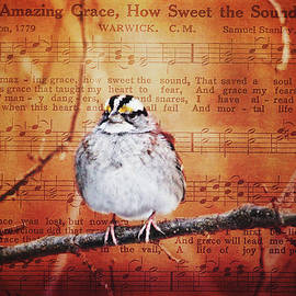 Amazing Grace by Trina Ansel