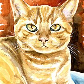 Dora Hathazi Mendes - Amber Eyes - Orange Tabby Cat Painting