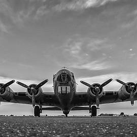American B -17 Flying Fortress Black And White  by Terry DeLuco