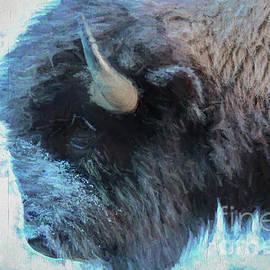 Bill And Deb Hayes - American Buffalo Profile Painting