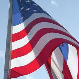 Ann Horn - American Flag