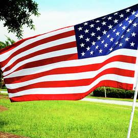 American Flag by Cynthia Guinn
