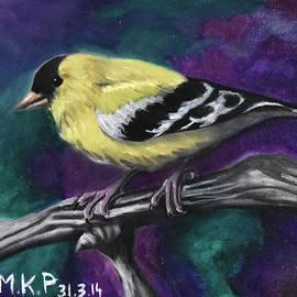 American Goldfinch by Marta Kazmierska