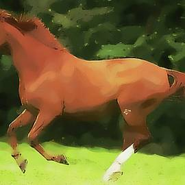 Chris Conway - American Quarter Horse Rough Painting