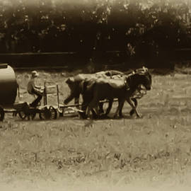 Amish Farmer - Lancaster County Pa. by Bill Cannon
