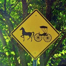 Cynthia Guinn - Amish Traffic Sign