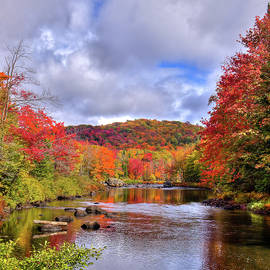 An Autumn To Remember by David Patterson
