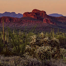 Saija Lehtonen - An Evening in the Sonoran Desert