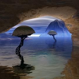 An Eye on the World by Steve Kelly