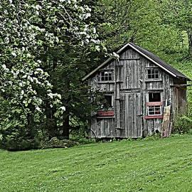Lyuba Filatova - An Old Barn