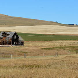 Ed Mosier - An Old Ranch Remembered