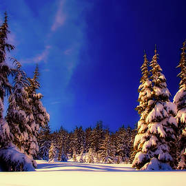 pixabay - an oregon winter