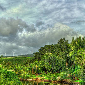 Reid Callaway - Anahulu Stream Reflections North Shore Windmills Oahu Hawaii Art