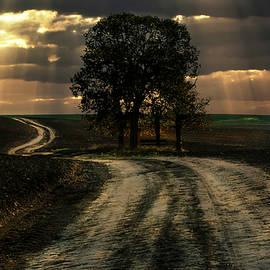 Jaroslaw Blaminsky - An old forgotten road