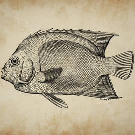 Joseph Kemeny - Angel Fish