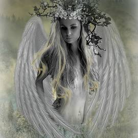 Ali Oppy - Angel of Contentment