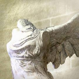 Angel Wing - #6 by Stephen Stookey