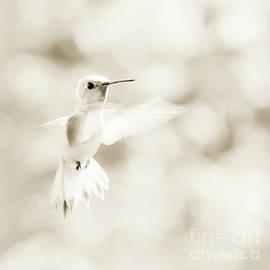 Beth Riser - Angel Wings
