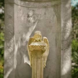 David Wilson - Angelic Reflection Pool