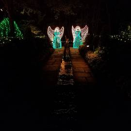 Angels Illuminate The Darkness by Stacey Marshall