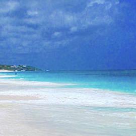 Shoal Beach Anguilla by Jerome Stumphauzer