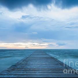 Anna Maria Island Pier by Liesl Walsh