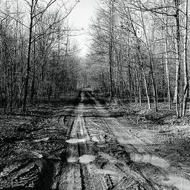 Michael Hills - Another Muddy Road