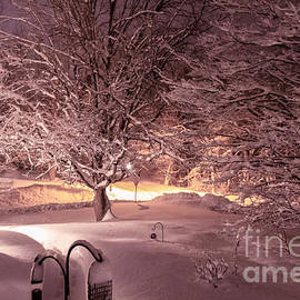 Claudia M Photography - Another snow storm