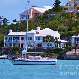 Another Vision Of Bermuda