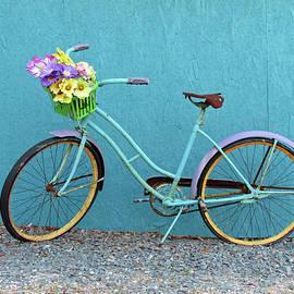Antique Bicycle by Cynthia Guinn
