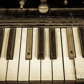Antique Piano Keys by Amy Sorvillo