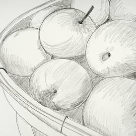 Cynthia Schoeppel - Apple Basket Pencil Sketch