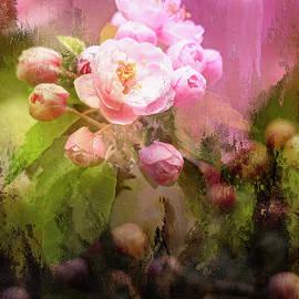 Apple Blossoms by Wild Sage Studio Karen Powers
