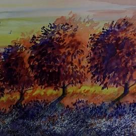 David K Myers - Apple Tree Sunset Watercolor