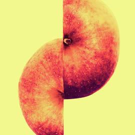 Wim Lanclus - Apple Worm