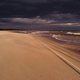 Approaching Storm by Liza Eckardt