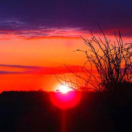 Tina M Wenger - April 30 2015 sunset