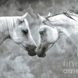 KaFra Art - Arabian Horses