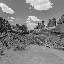 Arches National Park Park Avenue Black And White 2 by John McGraw